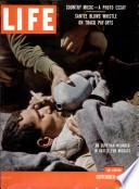 1956年11月19日